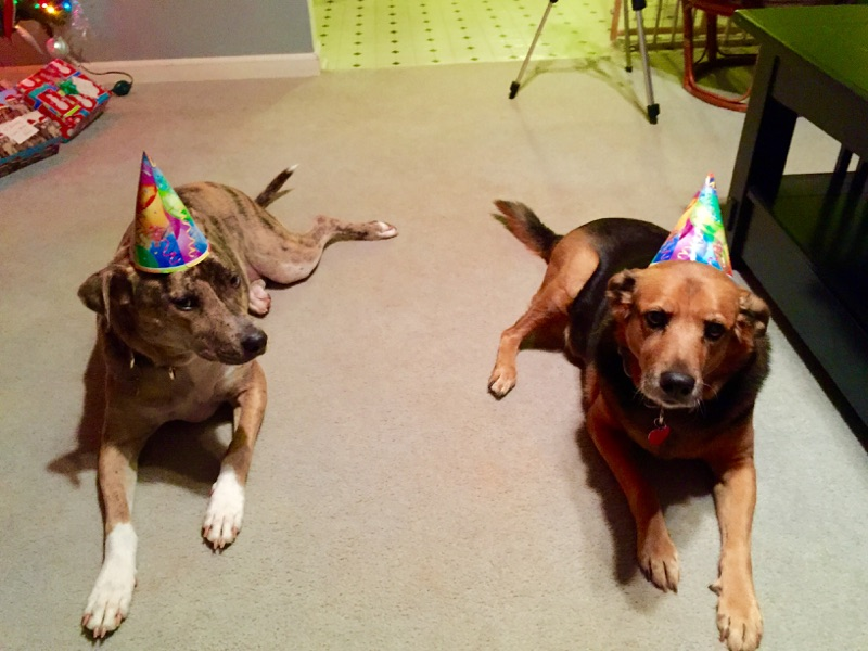 Molly's birthday with Kali